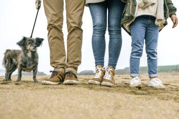 BKK ProVita - Familie mit Hund am Strand